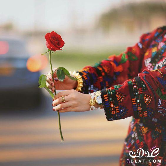 5a6a0d321 احلى صور ورود 2020 جوده عالية , صور زهور منوعة . اجمل صور ورد ملونة ...