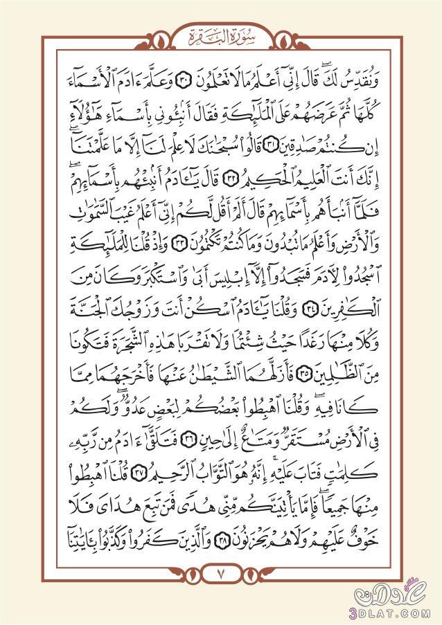 English Language Translation Meanings BAQARAH 26:43 3dlat.net_25_17_ee5b