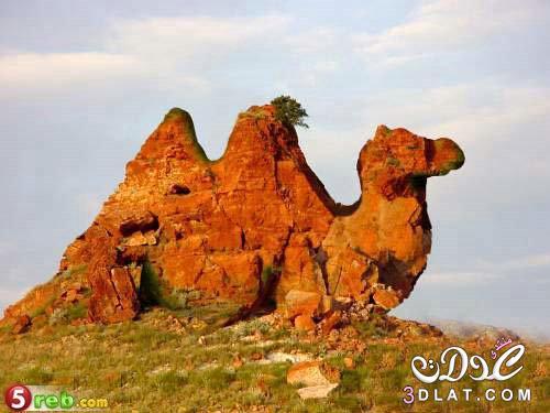أجمل الصور الطبيعية الغريبة 3dlat.net_26_15_d453