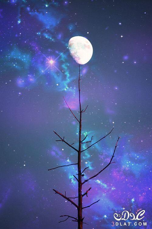 صورالقمر اجمل صور القمر صور القمر صور مميزة للقمر