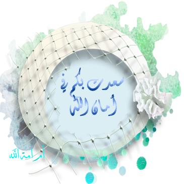 نصائح هامة لشعر ناعم وصحى الحجاب 3dlat.net_27_17_47eb