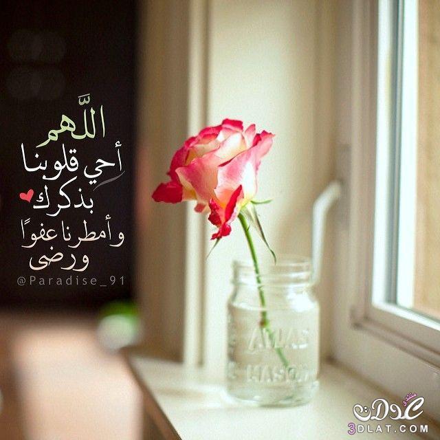 عبارات إسلامية صورة,صور للفيسبوك ,صور دينية 3dlat.net_28_15_453d