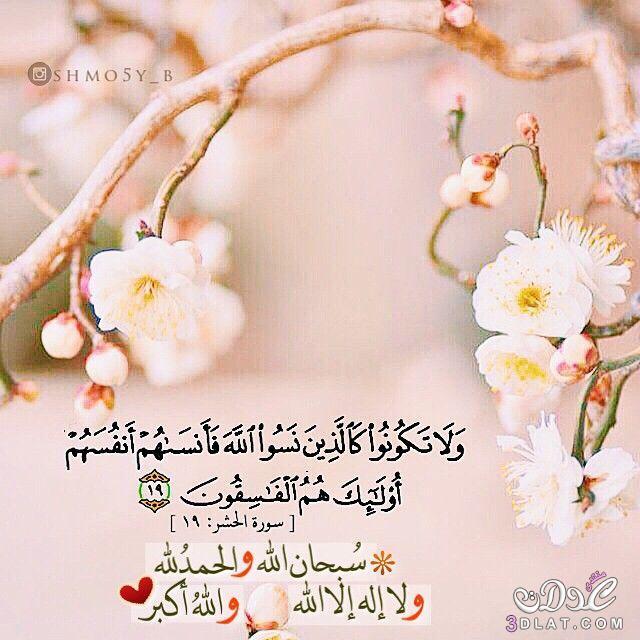 عبارات إسلامية صورة,صور للفيسبوك ,صور دينية 3dlat.net_28_15_89e7