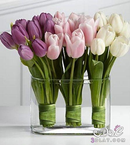 فازات ورود للديكور2015,مزهريات رقيقة ,ديكورات هادية ,فازات زهور كريستال 3dlat.net_31_14_f321